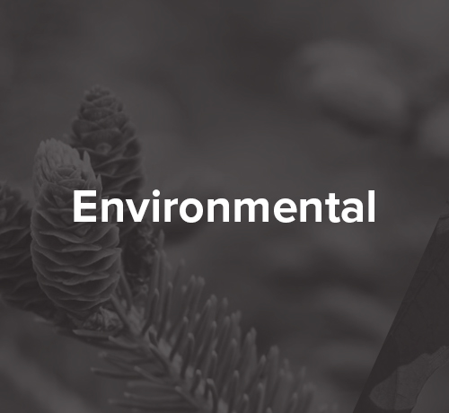 Environmental Marketing