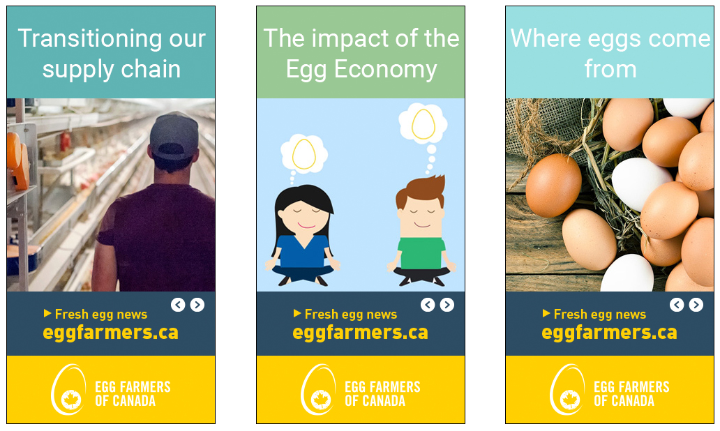Positioning EggFarmers ca as the Go-To Source for Egg