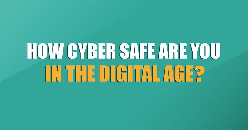 Cyber Safety Infographic