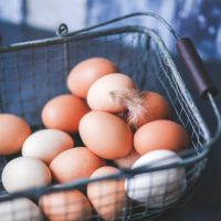Helping Egg Farmers of Canada Tell Their Sustainability Story